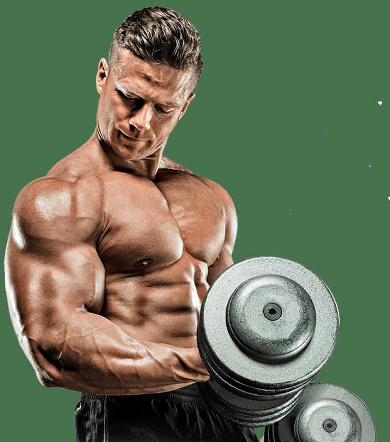 ginnastica palestra alma sport lecce